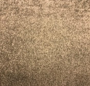 champion brown landlord carpets