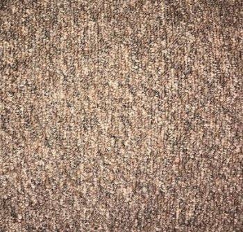 brown landlord carpets