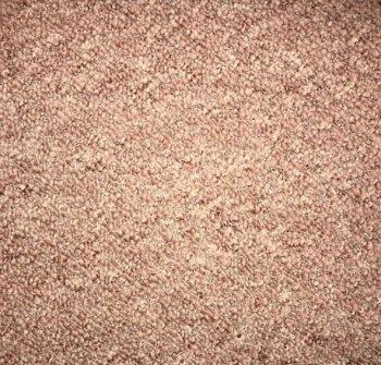 light brown landlord carpets