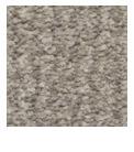 landlord carpets